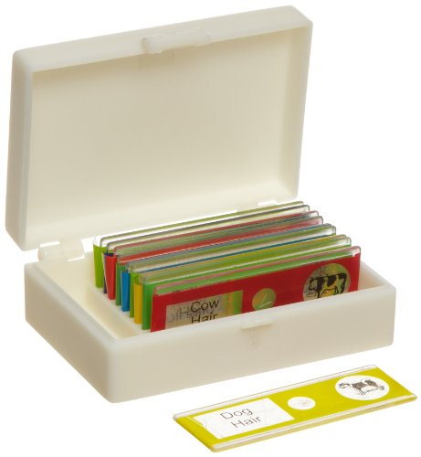 American Educational Plastic Animal Microscope Slide Set In Plastic Storage Box (Bundle Of 50)