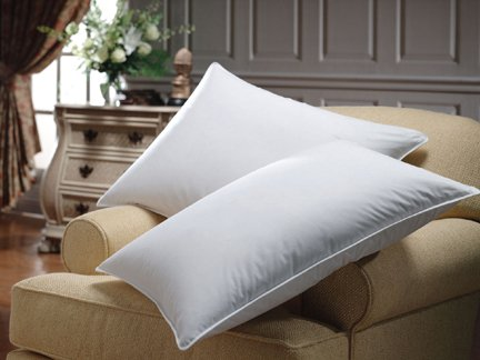 sheetsnthings Set of 2 Down Alternative pillows, Queen size, 300 thread count cover 100% Egyptian cotton, Allergy Free at Sears.com