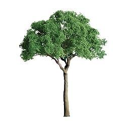 JTT Scenery Products Professional Series- Green Jacaranda, 3/4
