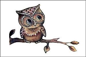 Amazon.com : Owl on a Branch Temporary Tattoo : Beauty