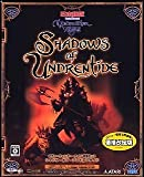 Neverwinter Nights Shadows of Undrentide 価格改定版