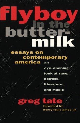 essays on america