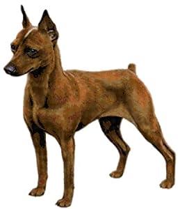 Amazon.com: Miniature Pinscher Dog Counted Cross Stitch Pattern: Arts