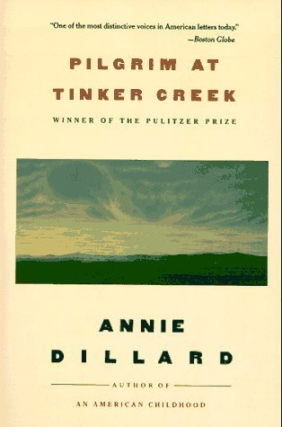 an analysis of metaphors in the writing life by annie dillard The writing life [annie dillard] on amazoncom free shipping on qualifying offers in this collection of short essays, annie dillard—the author of pilgrim at tinker creek and an american childhood—illuminates the dedication.