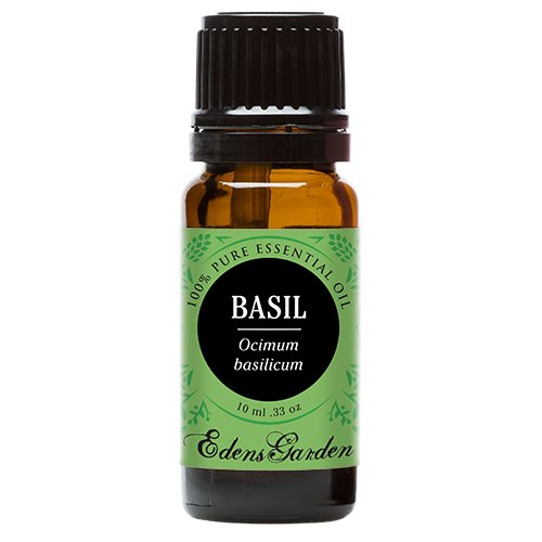 Basil 100% Pure Therapeutic Grade Essential Oil by Edens Garden- 10 ml