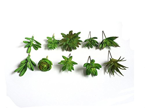 Lucky Six 10pcs Mini Artificial Succulent Plants ,Picks For Wedding ,Party,Home Decoration.