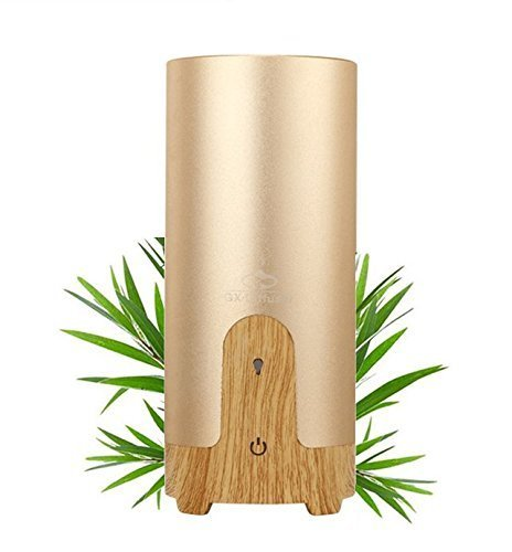 Ultrasonic Aroma Essential Oil Diffuser with Car Charger and USB Cable (Cylinder,40ML, Gold)
