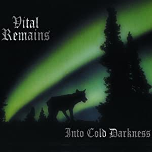 Into Cold Darkness [VINYL]