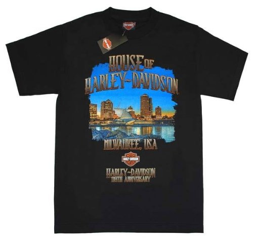 Harley-Davidson MenT-Shirt 's Limited 110th Skyline Black Tee. 30296259
