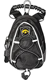 Iowa Hawkeyes Mini Day Pack - Black