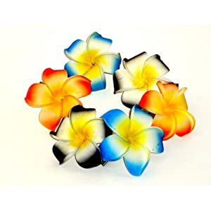 Hawaiian Plumeria Foam Flower Hair Clips Pairs of 3 Colors