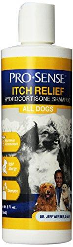 pro-sense-itch-relief-hydrocortisone-shampoo-8-ounce