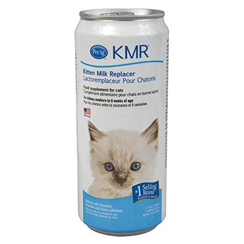 cat still spraying after neuter