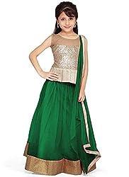 Sky Global Green Color Net Traditional Kids Wear Lehenga Choli for Girls Party Wear(Sky_8020_Green)