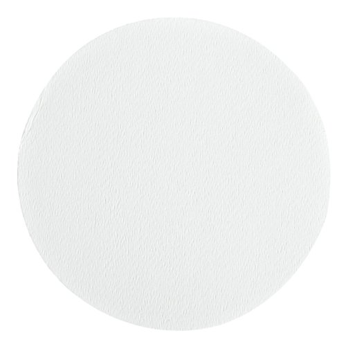 Whatman 7060-4715 Polycarbonate Cyclopore Track-Etched Membrane Filter, 47Mm Diameter, 10.0 Micron (Pack Of 100)