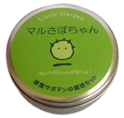 リトルガーデン サボテン マルさぼちゃん LG-39