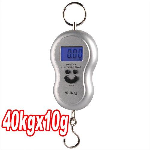10g-40kg Digital Balance Peson Pèse Electronique Crochet Pêche Scale Hook Bagage (argent)