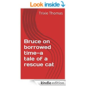 Bruce on borrowed time-a tale of a rescue cat