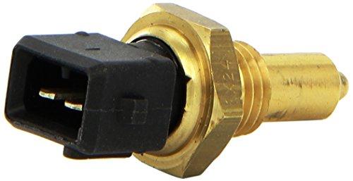 FAE 33155 Sensor, Öltemperatur