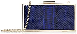 La Regale Snakeskin-Printed Framed Clutch