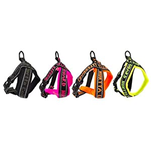 Hurtta Collection, Padded Y-Harness, Orange 35