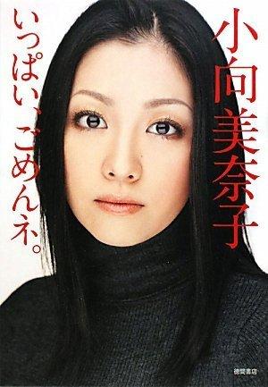 小向美奈子、懲役1年6ヶ月の実刑判決「同情するべき点はない」