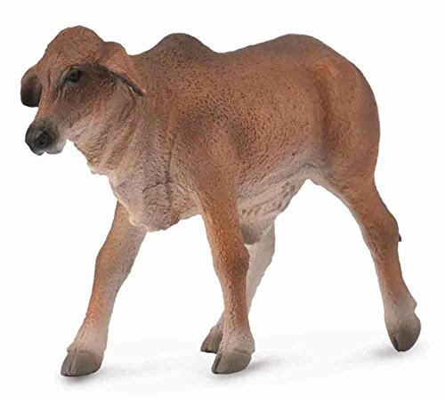 CollectA Red Brahman Calf