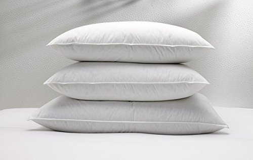 w-hotels-feather-and-down-pillow-standard