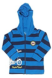 Chirpie Pie by Pantaloons Boy's Hooded T-Shirt (205000005610036, Blue, 9 - 12 Months)