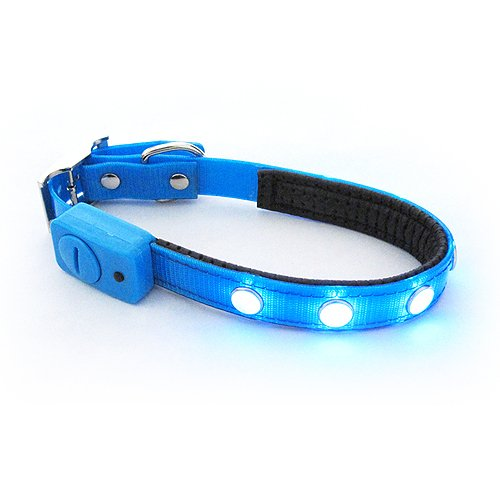 Generic Blue M-Size Luminous Pet Belts Supplies Led Dog Collar/Chains
