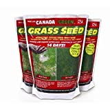 BULK PACK - Canada Green Grass Seed 10kg (10 x 1kg) - HUGE SAVINGS ON POSTAGE