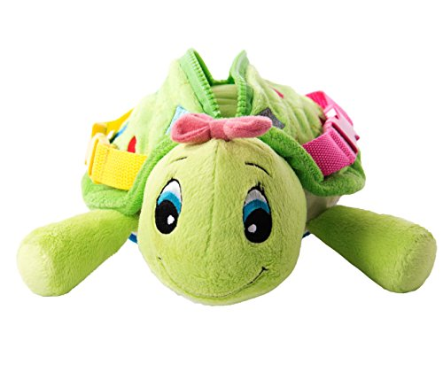 buckle-toy-belle-turtle