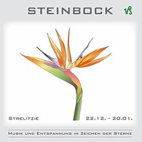 Steinbock musik und entspannung im zeichen der sterne
