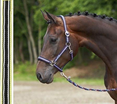 BUSSE everline Halfter COLOGNE, Pony, schwarz/hellgrün