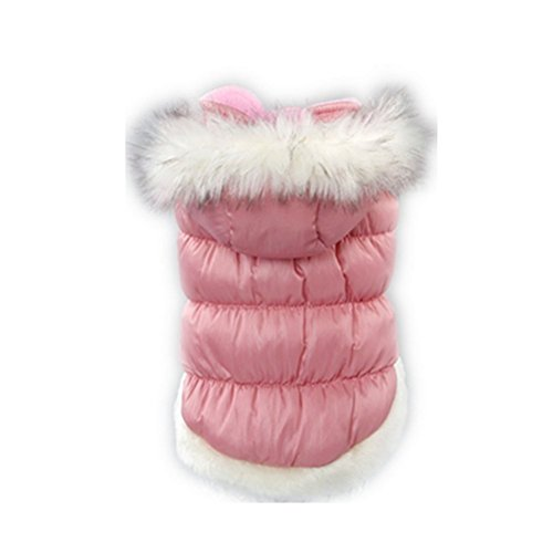 Zerotone Princess Winter Spring Coat with Detachable Cap for Small Pet Dog Cat 4 Colors XS-3XL