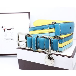 COACH Striped Multicolor Leather Collar with Engraveable Charm 60407 Limited Edition - Turquoise/Yellow, Large (17