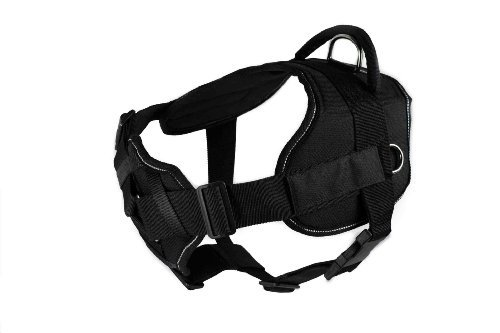 Dean & Tyler Fun Harness with Padded Chest Piece and Strap for Dogs, Medium, Black with Reflective Trim (Dean Tyler Harness Medium compare prices)