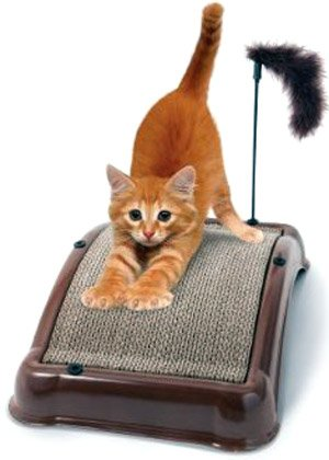 1, EMERY, CAT, BOARD, Patented abrasive emery surface works like a nail file, Bonus furry play toy and catnip included, Cat Board's special arch, design is perfect for stretching and scratching, 18