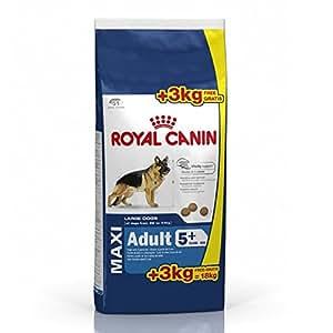18 kg royal canin maxi adult 5 hundefutter haustier. Black Bedroom Furniture Sets. Home Design Ideas