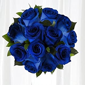 fiesta roses long stem blue roses 12 stems