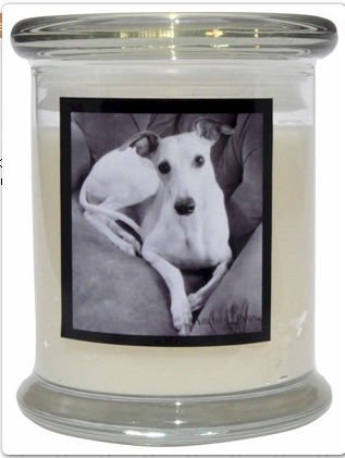 Aroma Paws 364 Breed Candle 12 Oz. Jar - Whippet