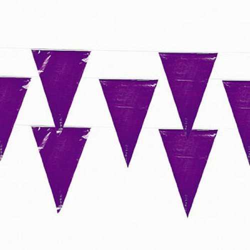 Fun Express 100 Ft Purple Pennant Banner 48 Flags Party Event Toy