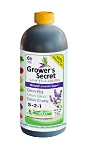 Grower's Secret GSGB32R 32-Ounce Growers Secret Grow Big Refill (Discontinued by Manufacturer)