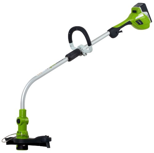 Greenworks 21602 20-Volt Lithium Ion 12-Inch Cordless Electric String Trimmer/Edger with 6 Amp/Hour Extended Run-Time Lithium Ion Battery & Charger