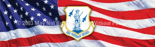 Clearvue Graphics - Mil-036-16-54 - Window Graphic - 16X54 Air National Guard