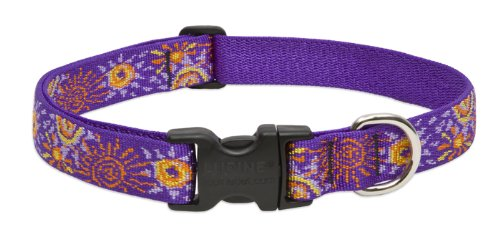 Lupine 1-Inch Sunny Days 16-28-Inch Adjustable Dog Collar For Large Dogs