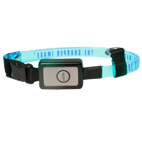 The Sharper Image Led Flashing Light Pet Collar, Blue