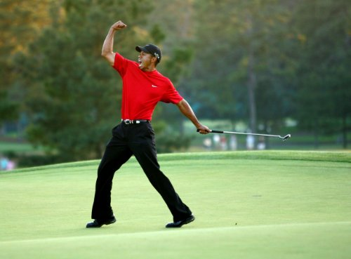 Tiger Woods Poster Photo Celebrity Golf PGA Champion Limited Print Size 24x36 #2 (Tiger Woods Photo compare prices)