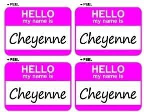 Amazon.com: Hello My Name Is Cheyenne - Sheet of 4 - Window Bumper