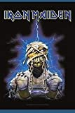 Bioworld Merchandising - Iron Maiden poster tissu World Slavery Tour 75 x 110 cm